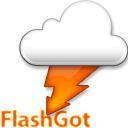 FlashGot for Firefox Icon