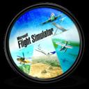 Flight Simulator X Icon