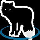 MetaFox Icon