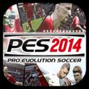 PES 2014 Icon
