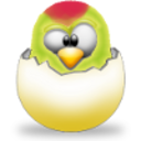 WinParrot Icon