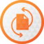 Paragon Partition Manager Free Icon