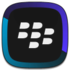 BlackBerry Link Icon
