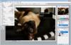 Adobe Photoshop CS2 - 2