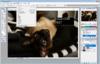 Adobe Photoshop CS2 - 3