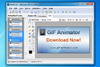 Adv GIF Animator - Screenshot 2