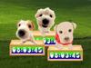 Cute Puppy Clock - Screenshot 2