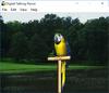 Digital Talking Parrot - Screenshot 1