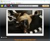 DVD Slim Free - Screenshot 1