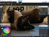 Paint.NET - Screenshot 2