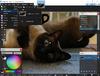 Paint.NET - Screenshot 3
