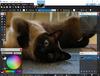 Paint.NET - Screenshot 1