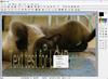 PhotoFiltre - Screenshot 2