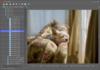 PhotoGrok - Screenshot 3