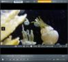 RealPlayer Cloud - Screenshot 4