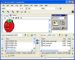 AceFTP 2 Freeware Screenshot