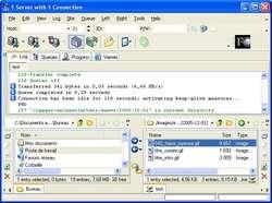 AceFTP Pro Screenshot