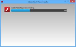 Adobe (Macromedia) Flash Player Screenshot