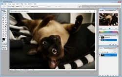 Adobe Photoshop 9 CS2 Screenshot