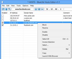 BlueLife Hosts Editor Screenshot