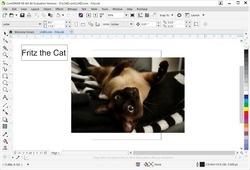 CorelDRAW Graphics Suite X8 Screenshot