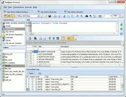 Database Browser Screenshot