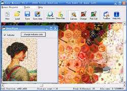 Easy Mosaic Screenshot
