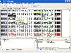 FlexHEX Screenshot