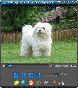 FLVPlayer4Free Screenshot