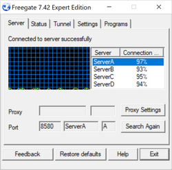 Freegate Expert Screenshot
