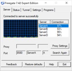 Freegate Expert Screenshot