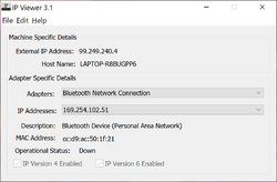 IP Viewer Screenshot