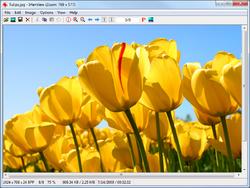 IrfanView All Plugins Screenshot