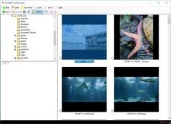 JMG Photo Printer Screenshot
