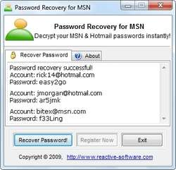 MSN Messenger Password Recovery Screenshot