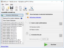 MySQLBackupFTP Screenshot