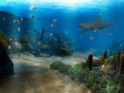 OceanDive Screenshot