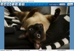 Photo Gadget Viewer Screenshot