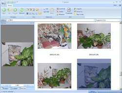 STDU Explorer Screenshot