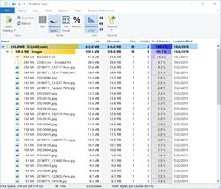 TreeSize Free Screenshot