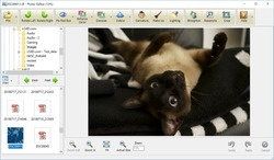 Vicman Photo Editor Screenshot