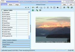 Willing Webcam Lite Screenshot