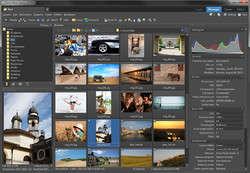 Zoner Photo Studio Free Screenshot