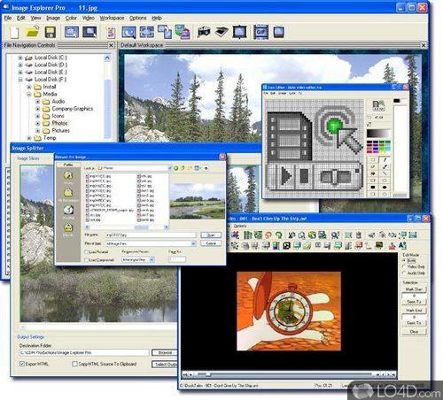 CDH Image Explorer Pro - Download