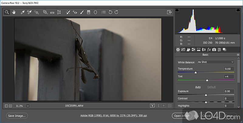 Adobe Camera Raw - Screenshots