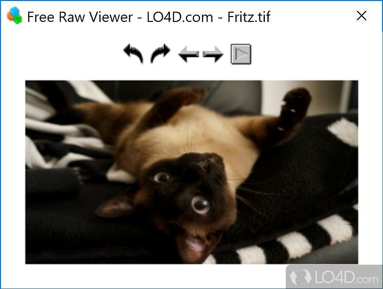 free raw photos viewer
