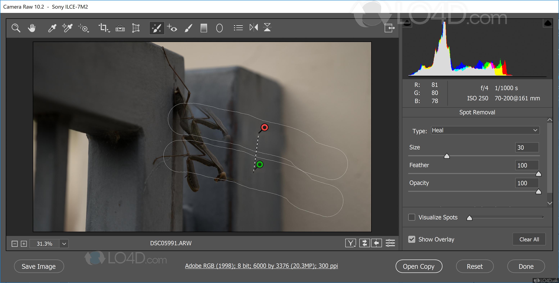 Adobe camera raw download.