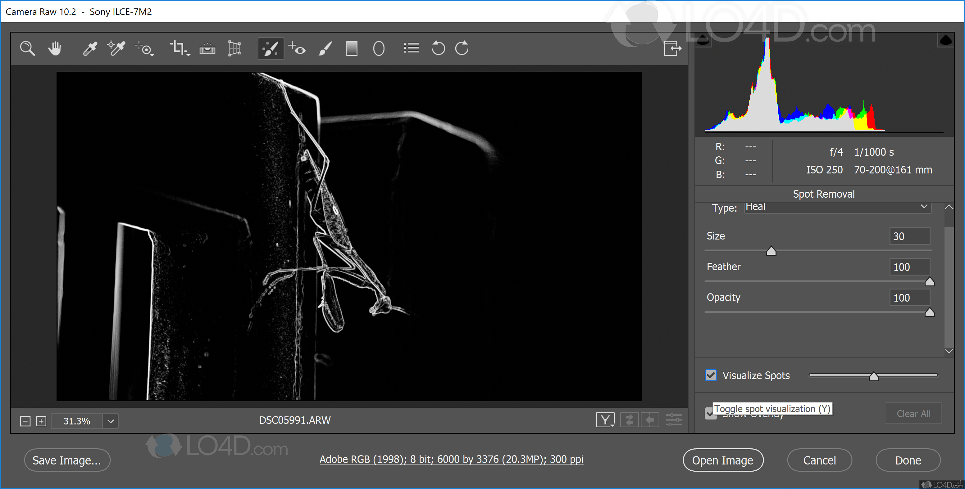 Download Camera Raw for Photoshop -