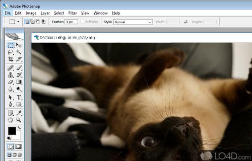Adobe Photoshop 9 CS2 Screenshot