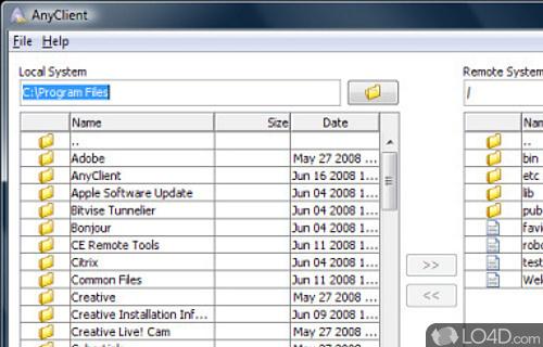 AnyClient Screenshot